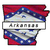 Arkansas flag and outline