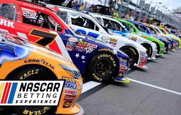 Nascar cars ready for the race