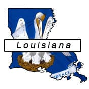 Louisiana Flag and Outline