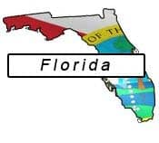 Florida flag and outline