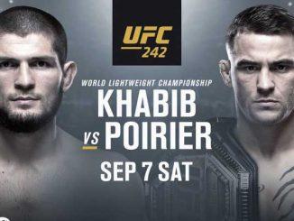 UFC 242