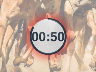 Virtual sports camel racing
