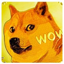 18+ Dogecoin betting